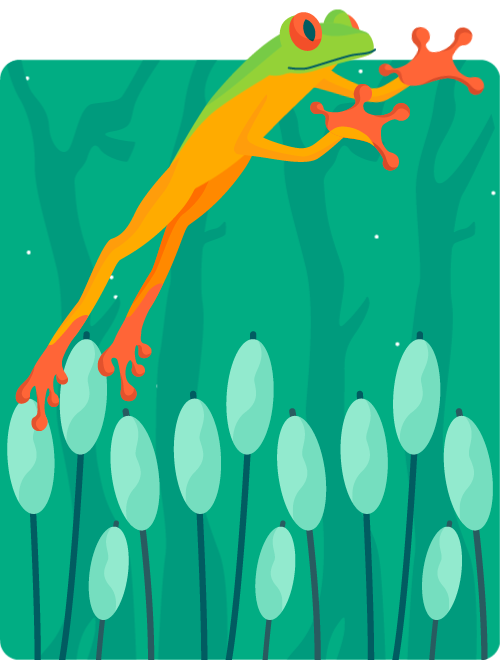 Illustration of a frog jumping in slow-motion